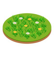 meadow icon isometric style vector image vector image