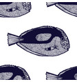 surgeonfish pattern in hand-drawn style vector image vector image