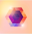 Abstract shiny gexagonal shape vector image vector image