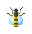 European western honey yellow bee vector image
