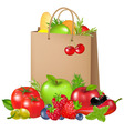 bag with products vector image vector image
