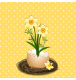 Easter Holiday Yellow Daffodil Flower vector image