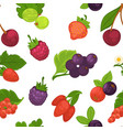 fruits and berries raspberry and strawberry vector image