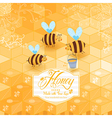 Honey template background Vintage frame with Honey vector image
