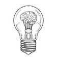 lamp with brain inside sketch vector image vector image