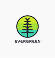 letter e for evergreen tree logo icon template vector image vector image