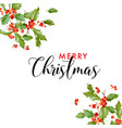 winter merry christmas holly leaf greeting card vector image vector image