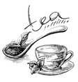 wooden spoon with tea leaves vector image
