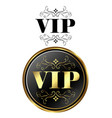 vip card exclusive vector image