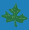 Fresh papaya leaf on blue background vector image vector image