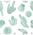 hand drawn wild cacti plants pattern vector image