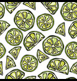 seamless endless pattern of citrus lime hand vector image