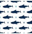 seamless pattern cute sharks isolated on white vector image vector image