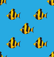 seamless pattern with colorful fishes vector image