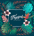 tropical hand written lettering text vector image vector image