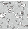 Grey cats vector image vector image