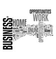 work at home business opportunity a step by step vector image vector image