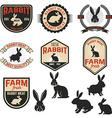 Set of rabbit meat labels badges and design vector image
