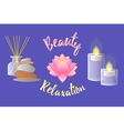 Accessories for Beauty Salon Relaxation Aromathera vector image