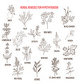 best herbal remedies for hypothyroidism vector image vector image