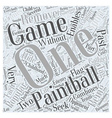 BWPB Why Paintball is Popular Word Cloud Concept vector image vector image