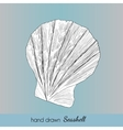 Hand drawn marine seashell vector image