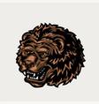 vintage colorful ferocious bear head vector image vector image