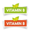 Vitamin B label set vector image vector image