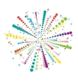 Big colorful firework vector image