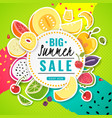 banner fruit poster fresh food juice summer vector image