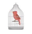bird pet shop icon vector image vector image