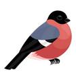 cute bullfinch icon vector image vector image