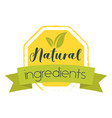 natural food sticker or seal vector image vector image