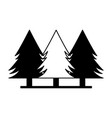 pine trees forest vector image vector image