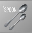spoon silver metal spoon top view vector image