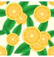 abstract background with citrus fruit vector image