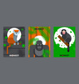 apes and monkeys in flat style banners vector image vector image