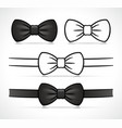 bow tie design drawing vector image