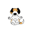 cartoon beagle dog sitting in lotus yoga pose vector image vector image