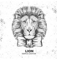 hipster animal lion hand drawing muzzle of lion vector image