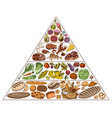 healthy food plan pyramid infographics for vector image