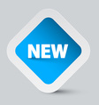 New Title on Blue Sticker vector image vector image