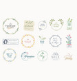 set elegant badges and stickers for beauty vector image
