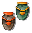urn for ashes isolated vector image