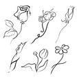 flowers design set vector image