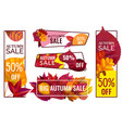 autumn sale banners special discount banner with vector image