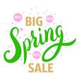 Big spring sale vector image