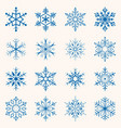 collection blue snowflakes sixteen snowflakes vector image vector image