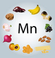 foods rich in manganese vector image