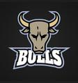 modern professional bull logo for a sport team vector image vector image